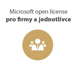Microsoft Windows Server Standard SA OLP NL 2Proc - pouze Software Assurance